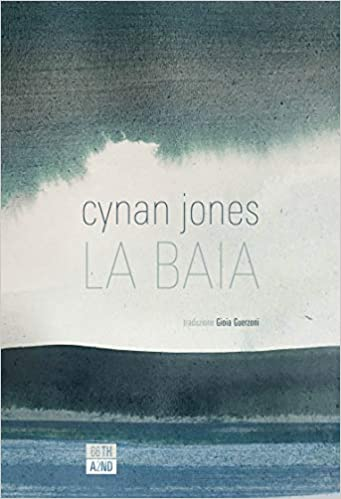 Cynan Jones, La baia