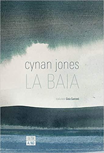 Cynan Jones, La baia
